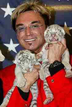roy tiger attack